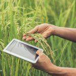 Agricultura 4.0: quais são os benefícios para o agronegócio