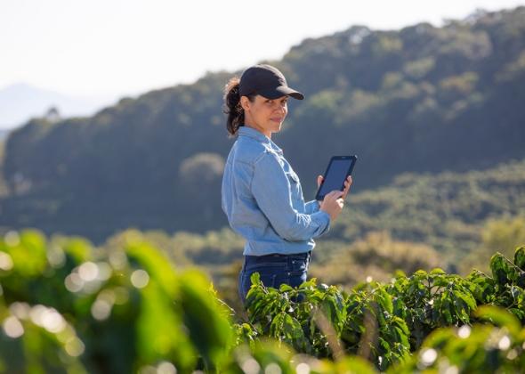 Pesquisa inédita mostra participação de mulheres na cafeicultura